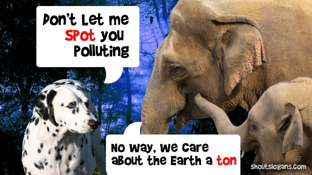 dont-pollute-image
