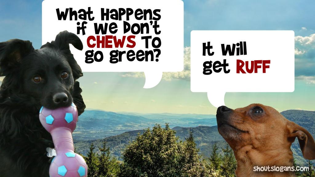 funny-dog-meme