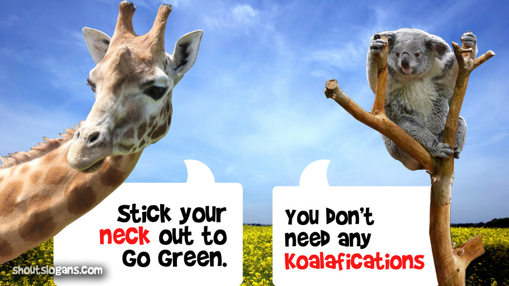 giraffe-koala-meme
