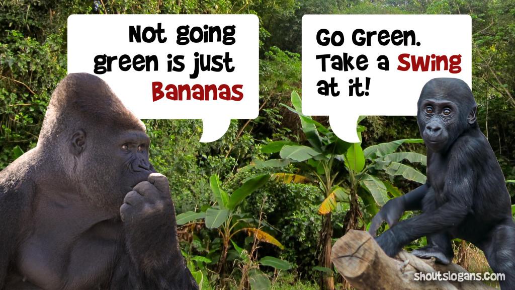 monkey-bananas-meme