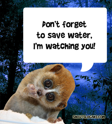Don't forget to save water, I'm watching you.