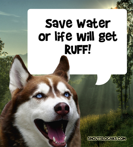 Save water or life will get rough!