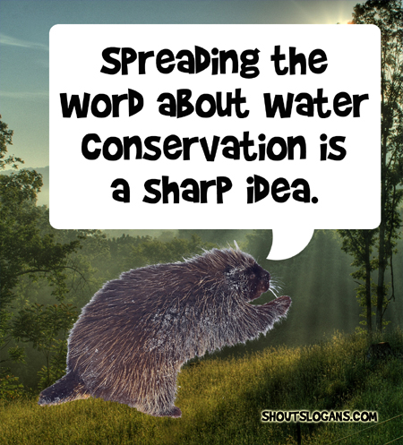 spreading the word about water conservation is a smart idea.