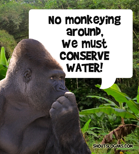 no monkeying around, we must save water!