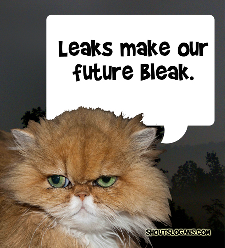 For a better future, fix your leaks!