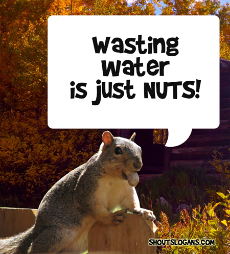 wasting water is just nuts