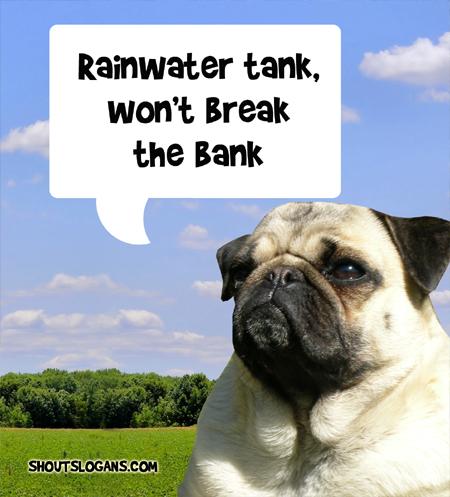 Use a rainwater tank.