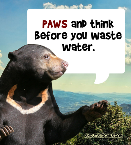 Pause and think before you waste water.
