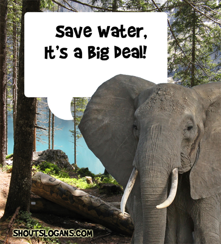 Save water, it's a big deal!