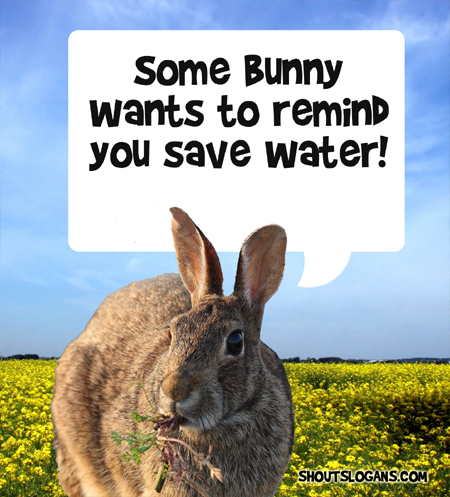 Some Bunny wants to remind you to Save Water!