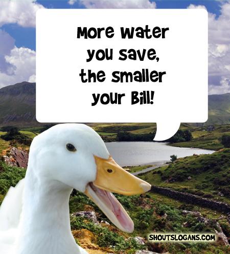 Save water, Save money.
