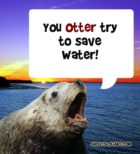 You should try to save water!