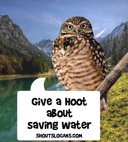 Show you care, help save water!