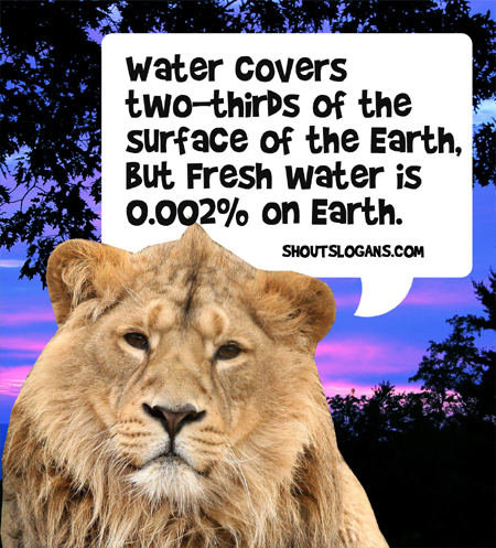 Water covers two thirds the surface of Earth but fresh water is only 0.002% of Earth.