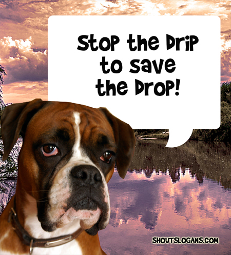 Stop the drip to save the drop.