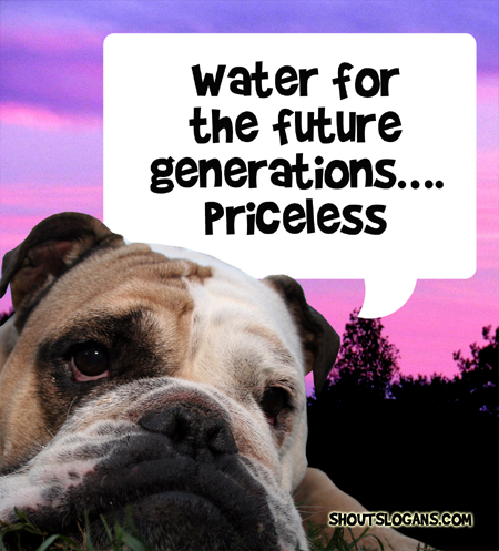 Water for future generations...priceless