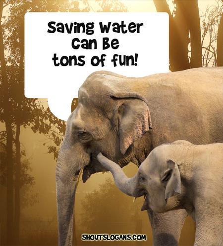 Saving water is big fun.