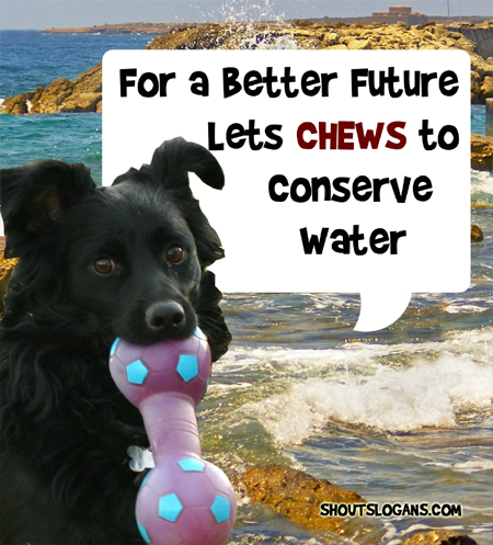 For a better future, conserve water today.