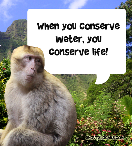 When you conserve water, you conserve life.