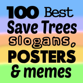 100-best-save-trees-slogans-posters-memes